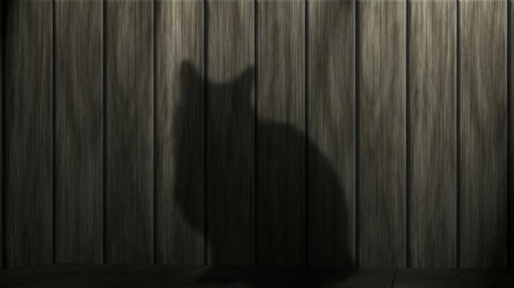 cat-233367_1280